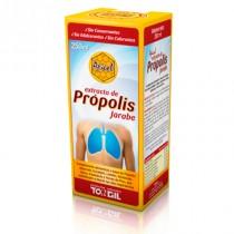 Apicol extracto própolis jarabe 250ml Tongil